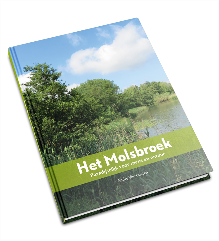 Molsbroek cover mockup 2